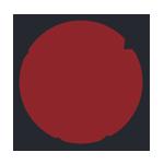 Wordpress Icon 150 x 150